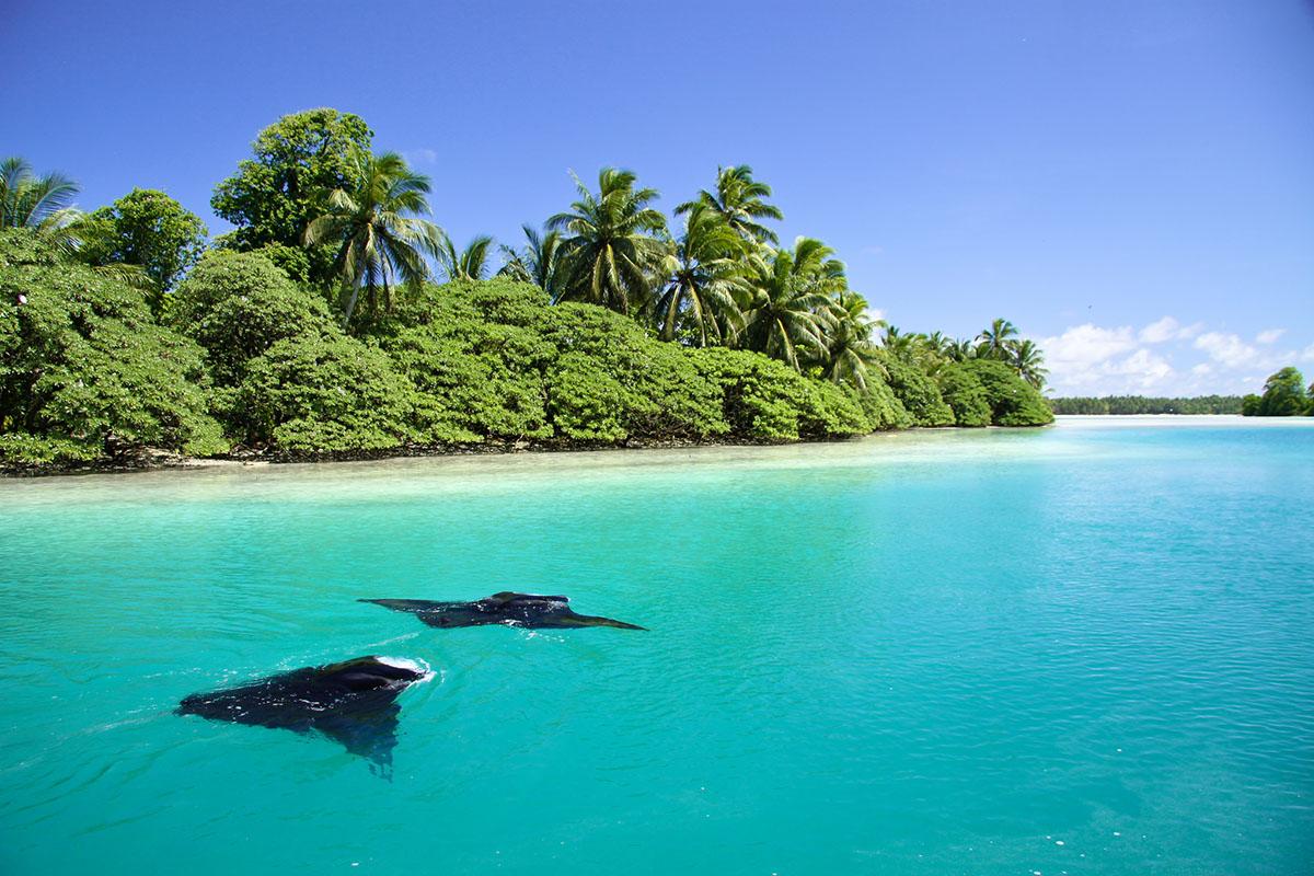 Que ganas de tomarme vacaciones con un poco de #LDV