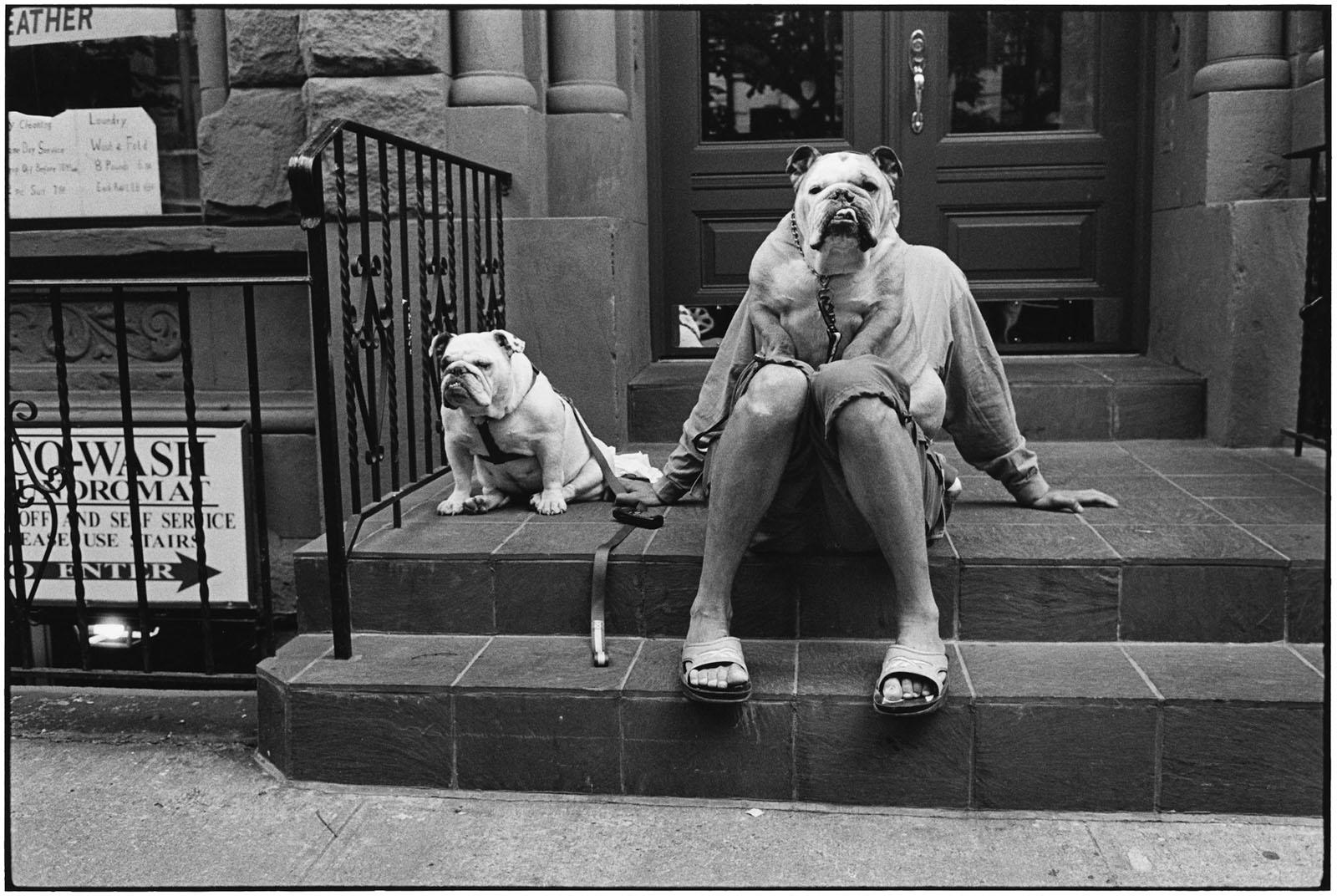 A cara de perro #RuletaRusa